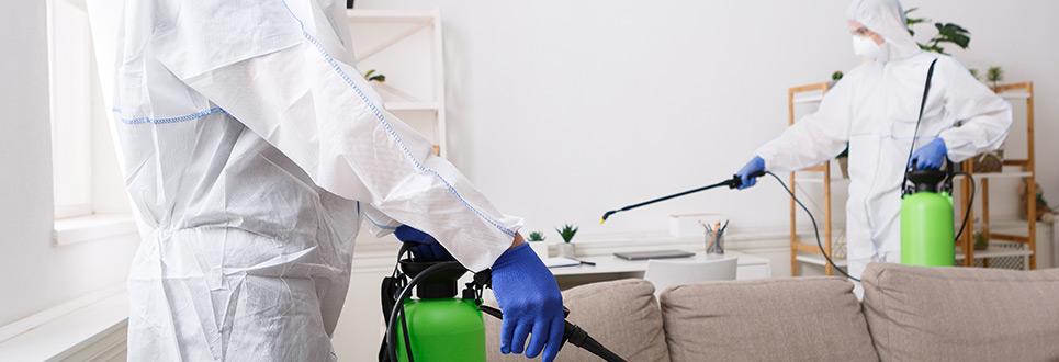 Como fazer uma desinfecção segura e eficaz no Porto